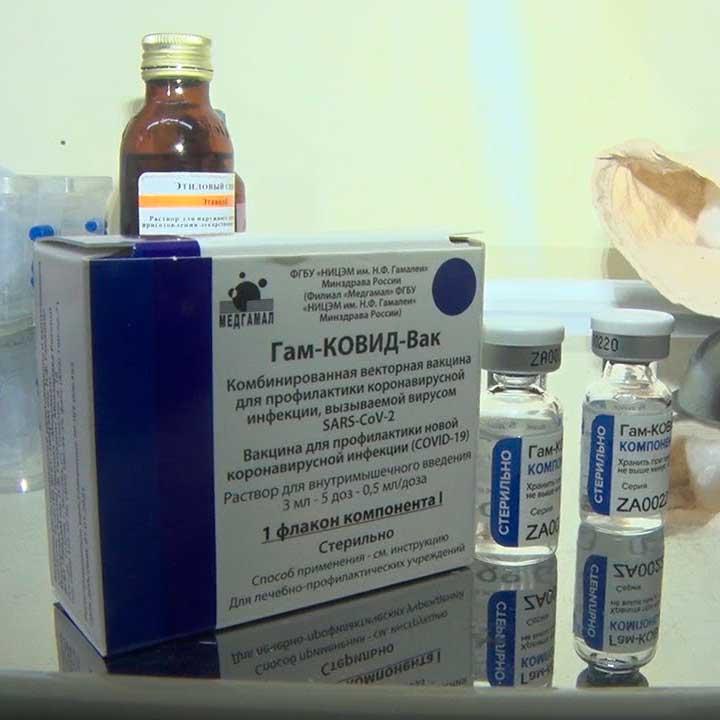 Термоиндикатор для вакцины ГамКовидВак